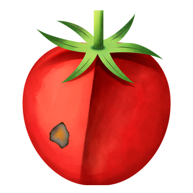 Flecken Tomate 2