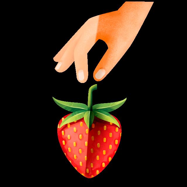 Hand pflückt Erdbeere