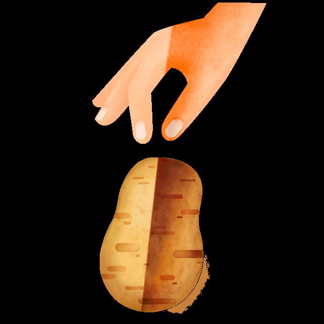 Hand pflückt Kartoffel