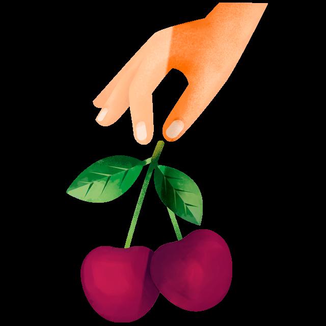 Hand pflückt Kirsche
