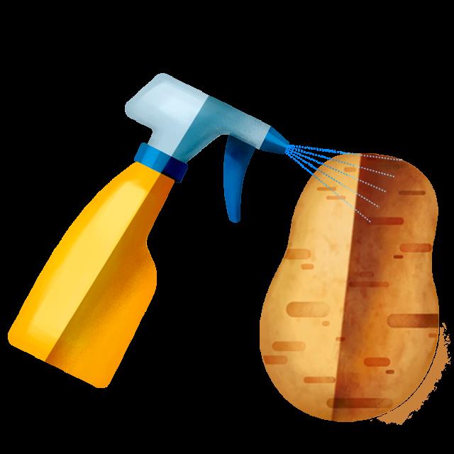 Sprühflasche Kartoffel