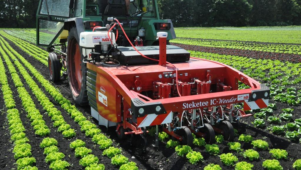 85 Prozent weniger Pflanzenschutzmittel dank Roboter