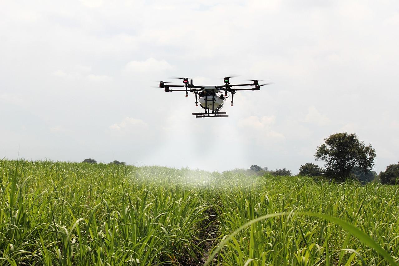Nachhaltiger Pflanzenschutz dank Smart Farming